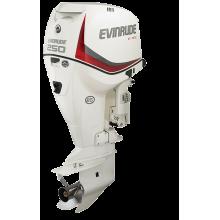 Pakabinamas variklis 250 AG - E-TEC