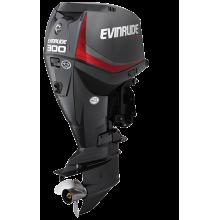 Pakabinamas variklis 300 AG - E-TEC